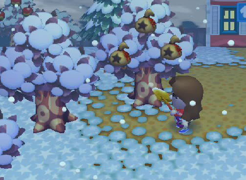 how to get a money tree on animal crossing city folk